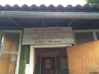 СНТ Мичуринец сегодня