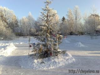 СНТ Мичуринец зимой