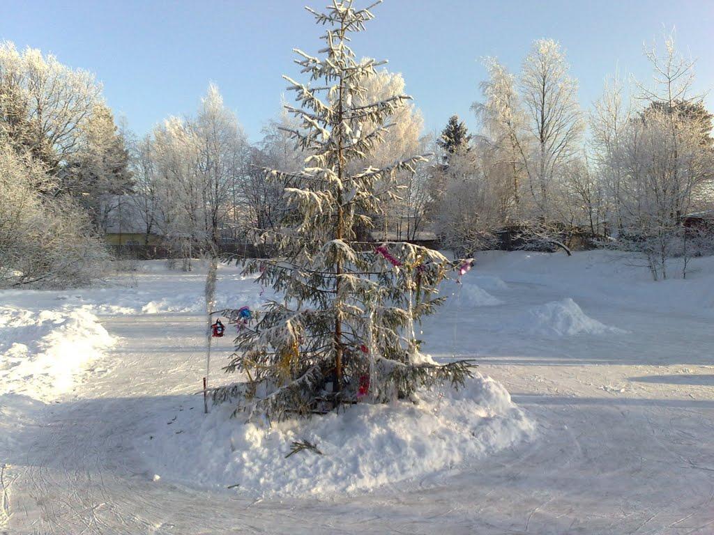 Ёлка на катке зимой на пожарном пруду СНТ Мичуринец