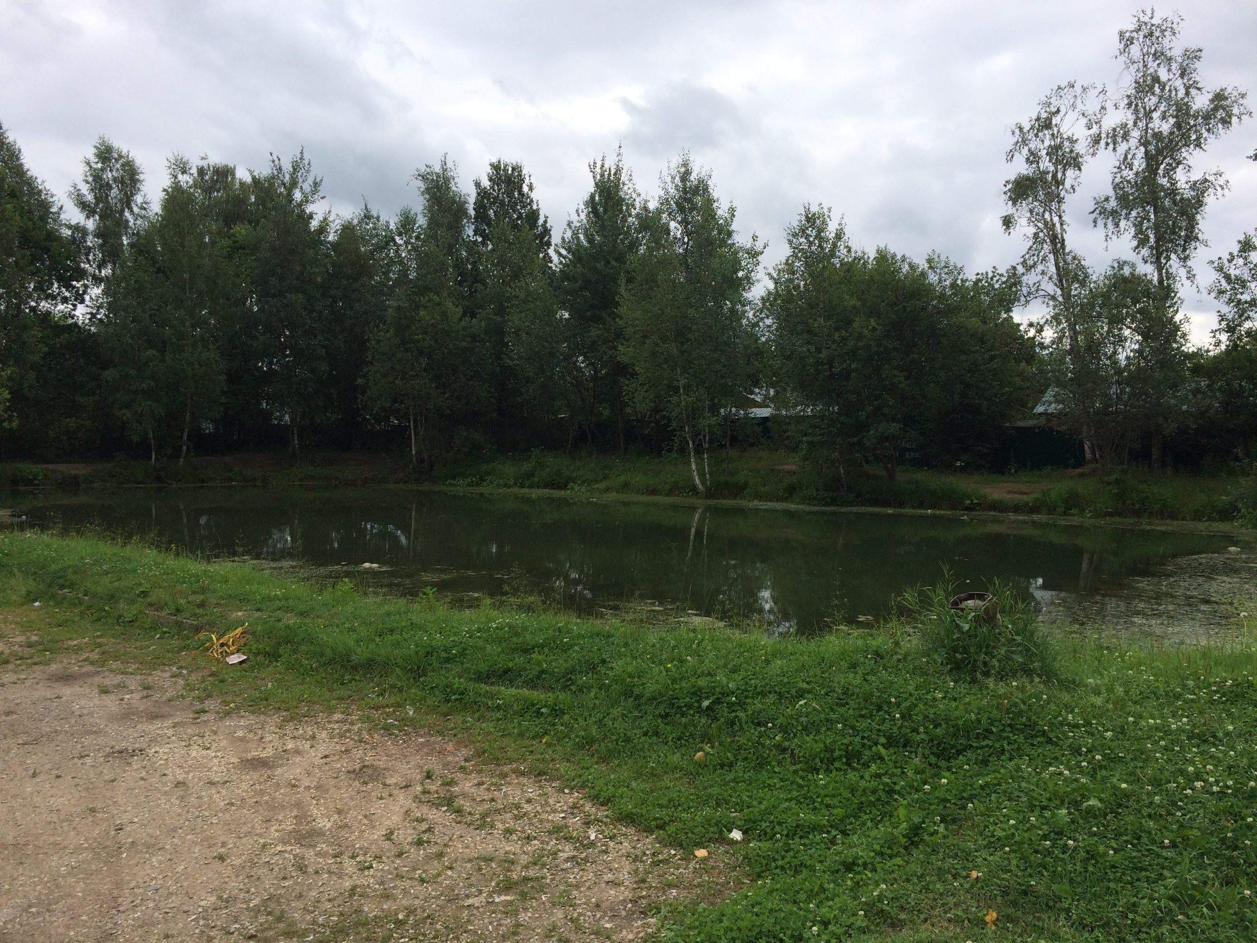 Пожарный пруд СНТ Мичуринец
